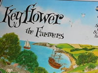 Keyflower291213-0000