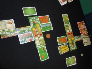 La partie se déroule en 9 tours, chacun étant divisé en différentes phases : 1/ On récolte, on ajoute un champ et on prend 4 cartes en main, 2/ On doit poser devant soi une carte de sa main et une carte de l'étalage ou on défausse d'abord une carte à l'étalage (1 au départ + celles qu'on a défaussé durant cette manche), 3/ On joue les actions que l'on souhaite (servir des clients occasionnels ou réguliers, acheter des denrées au magasin, planter dans ses champs, ...) 4/ On peut avancer son marqueur de score de 1 case pour 1 pièce, ou de plusieurs en payant ensuite autant de pièces que la valeur de la case.