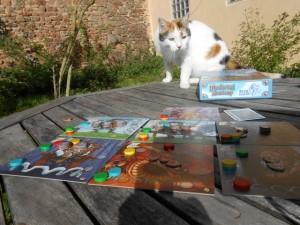 Ce jeu est tellement bien que même le chat veut jouer avec nous !