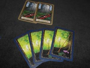 Je suis le premier de nous deux à éliminer des cartes de ma main. Pour ce faire, je décide vendre deux champignons identiques pour empocher 4 bâtons. Par la suite, je pourrai donc aller chercher des champignons plus loin dans la forêt (un bâton par carte depuis nos pieds)...