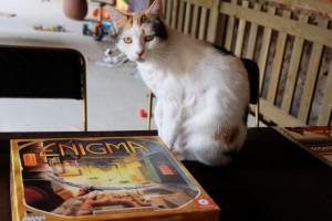 Tel le Sphinx, notre chat Pitocha se prépare à nous poser les énigmes d'Enigma...