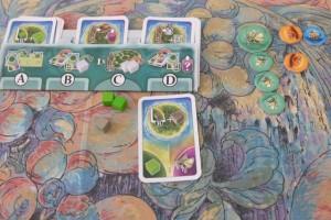 La zone finale de Barthélémy, avec 5 papillons hiboux, 2 crapauds dorés et 1 dodo, en plus de ses 3 cubes résiduels...