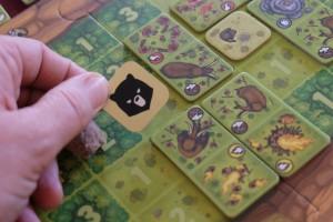 Soit on place les ours dans une zone qui permet de marquer 3 ou 4 PV (avec donc 3 ou 4 tuiles autour), soit on est plus méchant et on les place, comme moi ci-dessus) dans une zone où le joueur voulait forcément jouer une tuile de tribu...