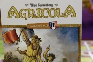 En cette période troublée d'attentats, découvrir l'extension France d'Agricola est comme un symbole... En plus, accessoirement, cela constitue ma première partie avec les cartes...