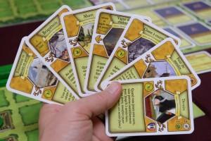 De la même manière, voici ma main de 7 cartes d'aménagements mineurs, conservées après élimination de 3 cartes. A noter que je décide de les classer, de la droite vers la gauche, dans l'ordre approximatif duquel je pense les jouer...