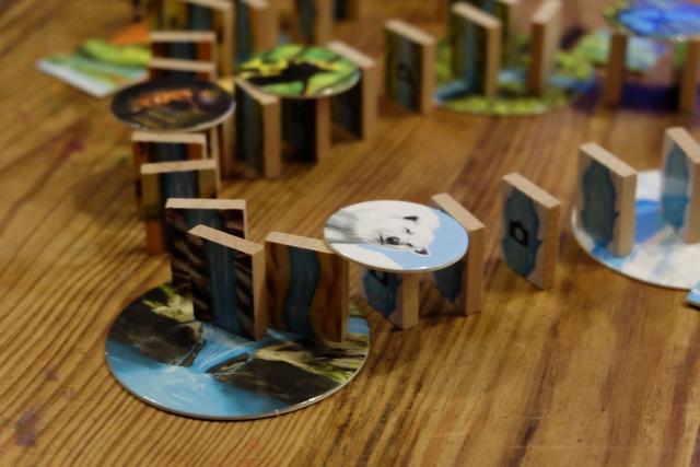 Plus que quelques secondes et Tristan va pousser le premier domino afin d'entraîner tous les autres dans sa chute... Séance tenante : 1, 2, 3... C'est parti ! Vidéo ci-dessous...