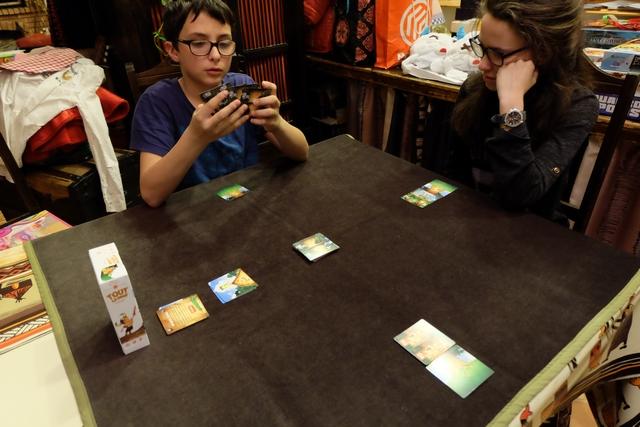 Chaque joueur a une souche d'arbre devant lui et il doit choisir une des trois cartes de sa main (+ 1 issue de la pioche) qu'il place au-dessus de celle-ci à condition qu'elle soit de la même couleur ou de la même valeur. Ensuite, la main de trois cartes va au joueur suivant et ainsi de suite jusqu'à ce que chacun ait posé six cartes. Ultra simple !