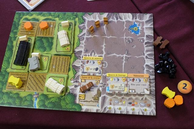 Voici le domaine de Gérard, une fois la partie achevée, juste avant le décompte final...C'est le roi de l'élevage !!! :-)