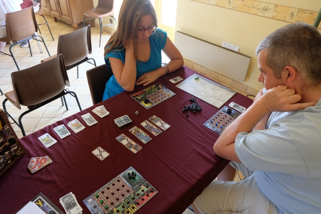Cette très sympathique (et rapide !) partie se déroule à 3 joueurs : Méline (sans sa sœur Angélique ! C'est bien la première fois !!!) avec les éléments jaunes, Edouard avec les bleus et moi-même avec les sempiternels verts...