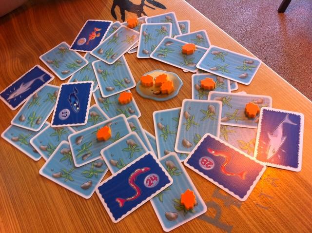En fin de notre premier tour, on a retourné deux requins, lesquels vont manger les deux poissons les plus gros (donc les anguilles 24 et 28). Le poisson le plus gros parmi les restants est la raie n°17. Le joueur qui l'avait retournée l'empoche, ainsi que toutes les autres raies s'il y en avait (ce n'est pas le cas), et les coquillages du rocher. Puis la carte avec le petit poisson n°6 est replacée face cachée.