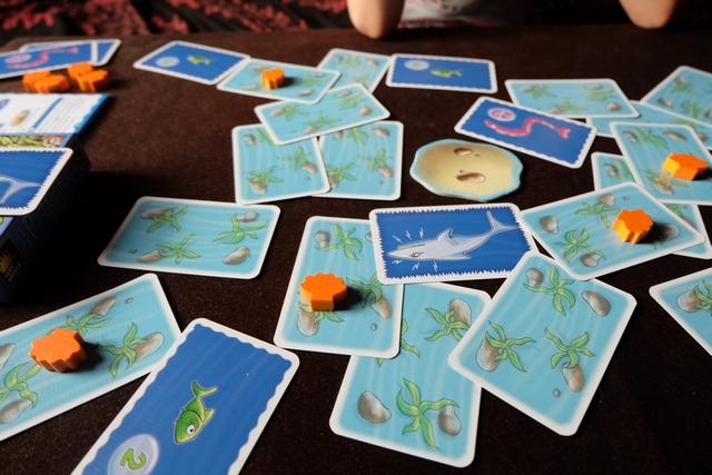 Non mais ? J'ai vraiment pas de chance ! Le requin tue mon anguille alors que Leila va prendre les trois poissons verts (chacun valant 2 PV à la fin)... Bouhhh !