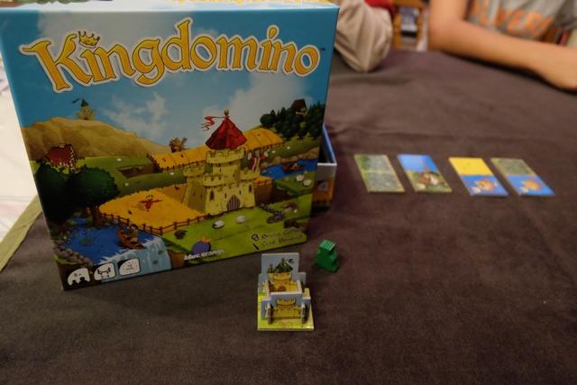 Chaque joueur va tenter de créer devant lui le paysage le plus lucratif avec son château placé sur l'une des tuiles. A noter que la zone de chaque joueur est de 5 cases par 5 cases et que l'on place des dominos avec 2 cases, donc il y aura 12 tours de jeu.