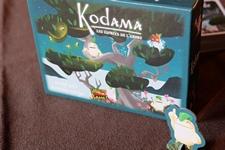 Kodama200417-0000