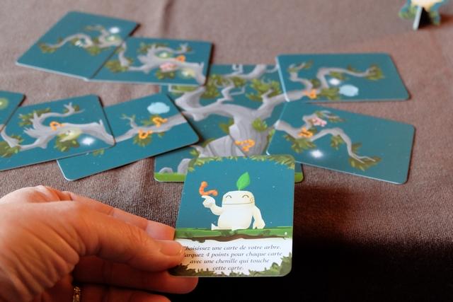En fin d'été, je joue la carte ci-dessus en choisissant ma carte tronc, puisque celle-ci est reliée à 4 cartes ayant au moins une chenille. Je score donc pas moins de 16 PV...