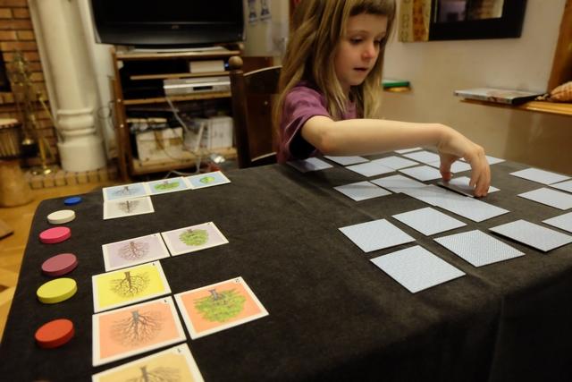 En face de chaque ligne, correspondant à un arbre précis, on a un jeton que le joueur à placer la tuile n°5 récupérera.