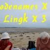 [16/08/2017] Codenames X 7, Lingk X 3