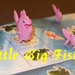 [05/11/2017] Little Big Fish