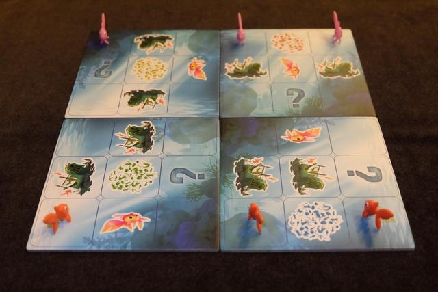Le plateau est constitué de 4 carrés de 9 cases, placés aléatoirement, ce qui génère des configurations différentes à chaque partie. Ensuite, on place 3 petits poissons chacun sur la ligne la plus près de soi (sur des cases dépourvues d'illustration)....
