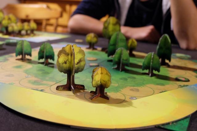Placer de grands arbres en bordure de plateau peut aussi bien gêner les autres joueurs, voire soi-même... Ensuite, faire cela ne rapportera pas autant de PV que si les arbres avaient été placés vers le centre du plateau (jetons différents lorsque l'on coupe l'arbre).