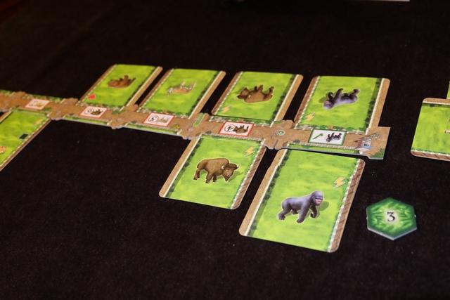 Un peu plus tard, juste après que nous avons décompté les gorilles. Chaque espèce a une valeur totale indiquée sur la séparation entre nos deux zoos (3 pour les gorilles, 4 pour les bisons, ...) et lorsque nos deux zoos cumulés atteignent ce total, le joueur qui en a le plus empoche un jeton hexagonal avec des PV (et des sous parfois). Ci-dessus, j'ai empoché 3 PV et on a retourné la tuile de séparation du gorille sur sa face décomptée.