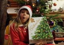 ChristmasTree241217-0000