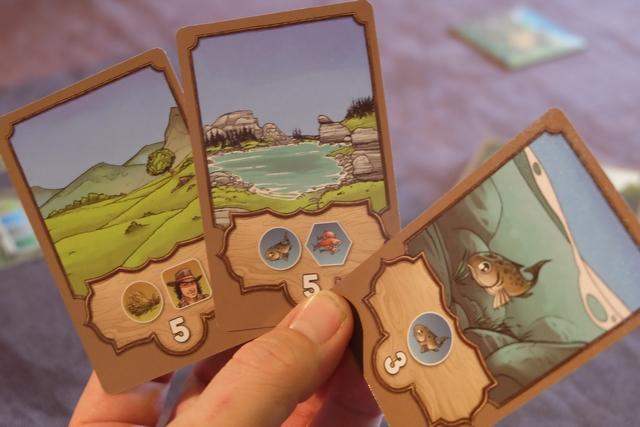 Chaque joueur reçoit une main de 5 cartes d'objectifs dont il devra en extraire 3 qu'il gardera jusqu'à la moitié de la partie (fin de la première manche), moment où il en repiochera 2 et qu'il devra en resélectionner un total de 3. Ci-dessus, voici celles que j'ai conservées : un poisson gris dont chaque exemplaire me rapportera 3 PV, une carte double poisson gris / poisson rouge dont chaque paire me rapportera 5 PV et,enfin, une autre carte double blé / fermier dont chaque paire me rapportera encore 5 PV. J'ai essayé de combiner les éléments requis afin de me concentrer dessus (on ne les défausse pas pour marquer les PV, on doit juste les posséder, donc on peut doublonner leurs points en quelque sorte).