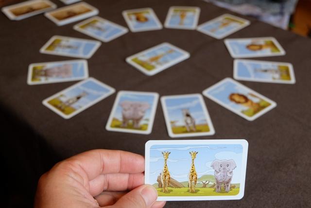 Ci-dessus, je vous montre la carte que j'ai en début de partie, à savoir que je vais essayer d'avoir à la suite, une girafe, une autre girafe, puis un éléphant pour la valider. Mes actions possibles ? Soit j'échange un animal visible avec celui du centre, soit je passe celui du centre sous la pioche et je retourne la première carte, soit j'intervertis deux animaux adjacents, soit je défausse ma carte photo en main contre une autre, et je crois que c'est tout. A savoir qu'on ne peut valider qu'un maximum de deux cartes photos par tour (une fois la nouvelle piochée, parfois, ça arrive qu'on en valide une deuxième).