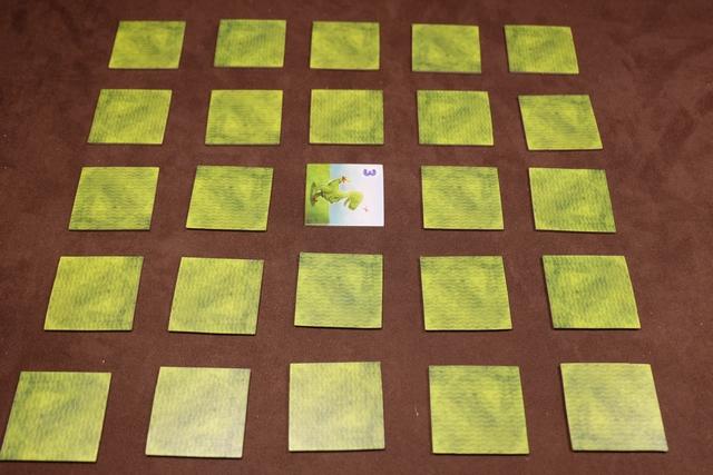 L'installation du jeu est très simple. On mélange 7 séries de 5 tuiles (de valeur 1 à 5) à 2 joueurs, puis on en étale 25 sous forme d'un carré (voir ci-dessus). On retourne la tuile centrale : ici un dino de valeur 3. Parmi les 10 tuiles restantes, chacun en prend 3  au hasard et les 4 dernières sont défaussées (on joue sans la variante draft).