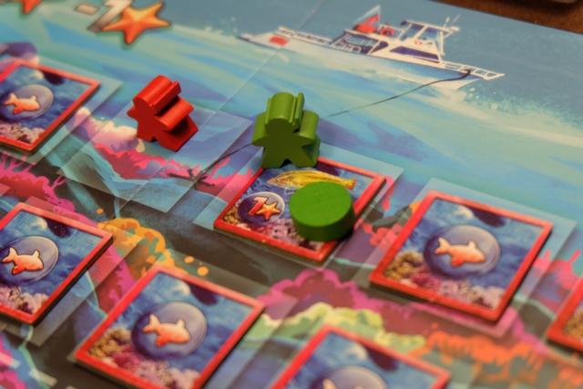 """Au premier tour, chacun de nous deux (Leila avec le plongeur rouge et moi-même avec le vert) ne descend que du bateau en retournant la tuile d'arrivée. Si cette tuile est vide d'animaux (le cas de Leila), elle est défaussée, sinon (mon cas) elle est posée face visible, je récupère la carte dans le stock d'animaux """"rouges"""" pour mémoriser que j'ai 1 PV (1 étoile) et je pose un jeton pour se souvenir que j'ai déjà vu cet animal (une vieille !)."""