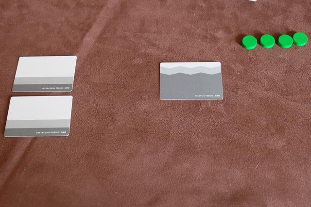 Devant moi, face cachée, voici ma main de cartes classées par période. Au maximum, chacun peut avoir 6 cartes sédiments (face cachée) et 6 cartes fossiles (face visible) simultanément. A noter que ce maximum peut évoluer en fonction des conférences académiques qu'on aura dispensées.