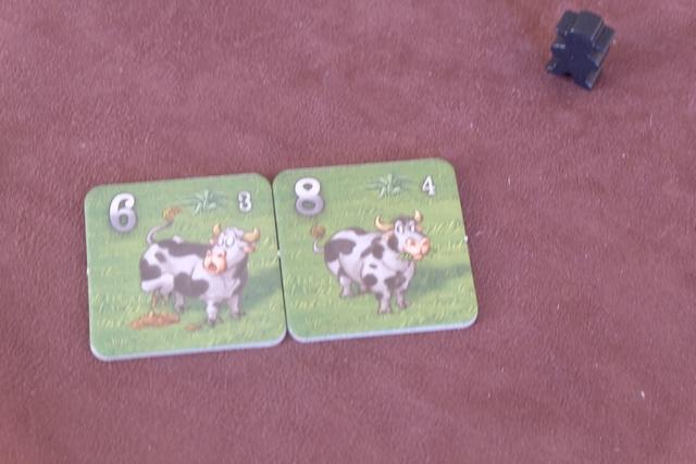 Avant d'entamer, chacun a également choisi de garder, parmi 3 tuiles piochées, soit une vache de n'importe quelle valeur, soit deux vaches d'un maximum de 8 chacune, soit trois vaches d'un maximum de 4 chacune. Ci-dessus, vous pouvez voir que j'ai gardé deux vaches de même race... Ça tombait pas mal !