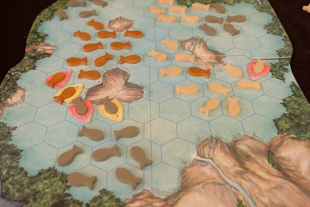Leila a commencé à placer son requin n°1 jaune, lequel mangera des poissons blancs, tandis que mon n°1 rouge consommera des gris, puis son n°2 mangera des gris, mon n°2 préférant les blancs, enfin nos deux n°3 mangeront des poissons marron.