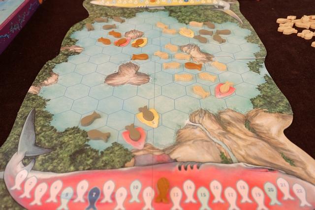 Voici nos premières victimes englouties par nos requins gloutons. Sur la piste de santé de chacun, nous sommes à 13 pour Leila et 12 pour moi, je serai donc le premier joueur du deuxième tour, une fois que la reproduction aura eu lieu...