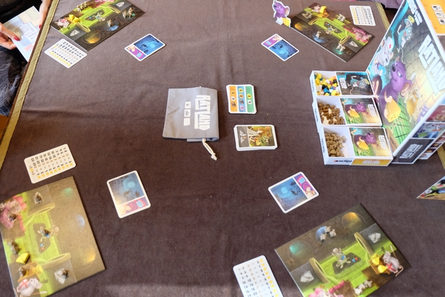 Voici donc à quoi ressemble la table alors que les quatre paravents ont été retiré. Leila est à ma gauche, suivie de Maitena et de Joris. On va résoudre les actions à présent...