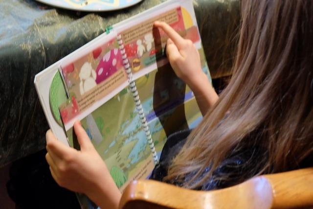 Exactement comme dans les livres dont vous êtes le héros de mon enfance, l'ouvrage propose divers choix, lesquels se résolvent par le fait de tourner une ou deux pages, le plus souvent, sachant qu'il y a aussi des options en lien avec le découpage en 3 parties de chaque page. Les illustrations, enfantines façon BD, aident les plus jeunes à rentrer dans l'histoire...