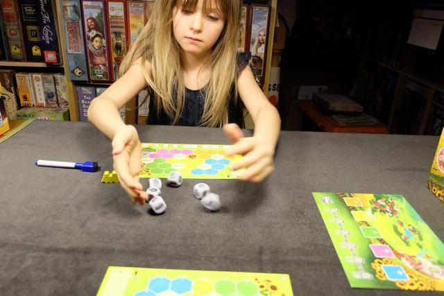 Premier tour de jeu : Leila lance les 6 dés et, ensuite, à tour de rôle, on va en choisir un chacun qu'on placera, à droite, sur l'une des cases colorées et on dessinera l'élément choisi sur une case de son plateau de la bonne couleur. Et ainsi de suite, jusqu'à ce que Leila en ait pris 3 et moi 2 (au tour suivant, ce sera l'inverse et donc, ce sera équilibré).