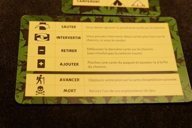 Les cartes de parcours, qui seront jouées au centre de la table sous la forme d'un chemin, comporte les symboles visibles ci-dessus. Je rappelle que le but ultime est d'atteindre la 9ème carte du paysage, c'est-à-dire d'utiliser le plus souvent possible l'option Avancer pour progresser sur la carte suivante.