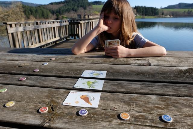 Fin de premier tour. A son tour, le joueur actif doit poser une carte de sa main sur un emplacement libre, adjacent à une carte déjà posée. Et c'est tout, jusqu'à la fin de la partie, lorsque chacun n'aura plus qu'une carte en main : celle-ci indiquera sa couleur pour le décompte à venir !
