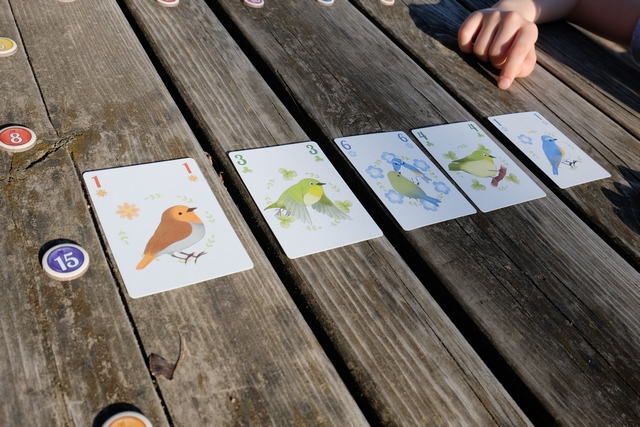 Lorsqu'une ligne (ou colonne) est complète, on attribue le jeton à la couleur d'oiseau majoritaire en valeur. Attention : un peu comme dans Stupide Vautour, si deux couleurs sont à égalité, elles ne candidatent plus et c'est la couleur en-dessous qui l'emporte. Frustrant ou tactique, à voir...