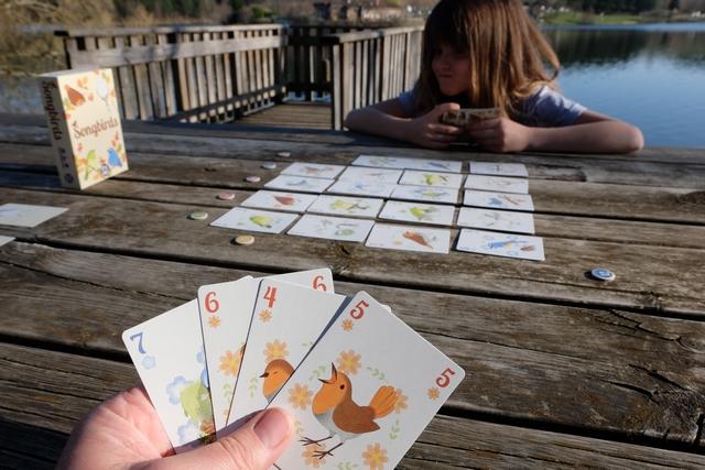 Voilà l'un des moments clé du jeu, à 3 tours de la fin, alors qu'on n'a plus que 4 cartes en main. A vrai dire, on a un peu tâtonné, joué au hasard, sans trop savoir s'il fallait appâter l'adversaire sur une couleur ou renforcer celle qu'on visait, mais là, on arrive dans un money-time qui fait peur (pour moi) : si Leila a effectivement en main la carte orange n°7, et qu'elle la garde, autant dire que j'ai perdu la partie ! En effet, on additionnera les jetons de la couleur de l'oiseau en main à sa valeur, donc je serai à 1 PV si cela est le cas...