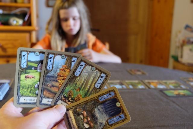 Au premier tour, je récupère une carte de nuit, laquelle me permet de piocher une des 8 cartes de nuit uniques valant double (ci-dessus vous voyez que j'ai une carte avec des bolets, cuisinables pour 3 PV par champignon, ou vendable pour 3 bâtons par champignon).