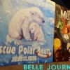 [10/06/2019] Rescue Polar Bears, Museum