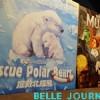 [10/06/2019] Rescue Polar Bears, Museum
