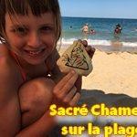 [19/07/2020]  Sacré Chameau